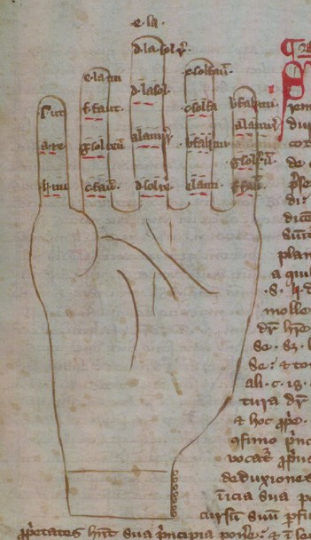 Diagram of a hand, each section of fingers labelled in latin